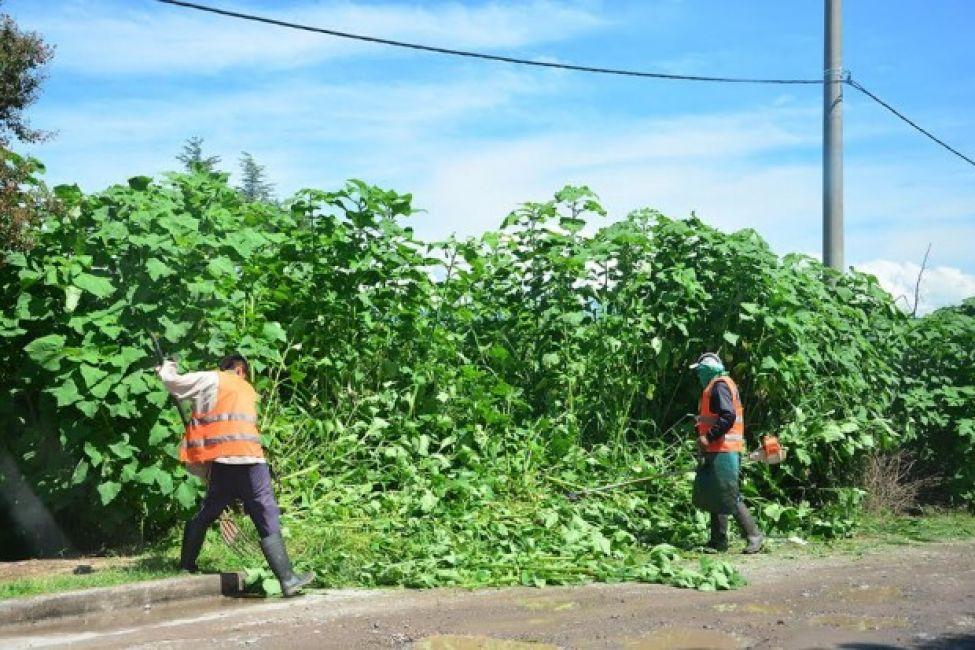 Ambiente y Obras Públicas realizan trabajos en barrios de San Luis
