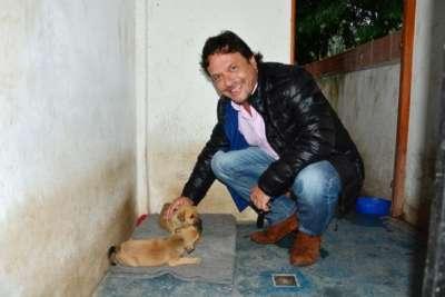 La Municipalidad organizó tres días de actividades para celebrar a las mascotas.