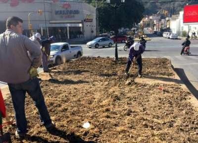 Ambiente continúa con los trabajos de embellecimiento de la avenida Entre Ríos.