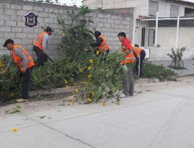 Efectivos del Sector 7A trabajan en la prevención de ilícitos