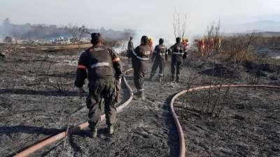 En lo que va de julio, el fuego arrasó más de 30 hectáreas