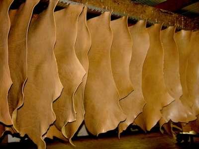 El INTI impulsa el agregado de valor del cuero a través de su curtido artesanal
